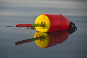 Lobster Buoy, Stonington Harbor, Maine - Roddy Scheer Photography