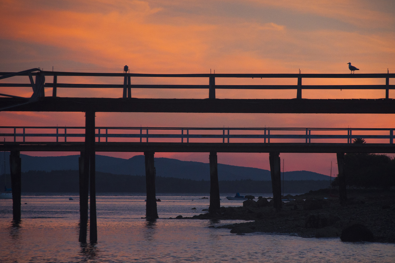 Docks at Sunset, Castine, Maine